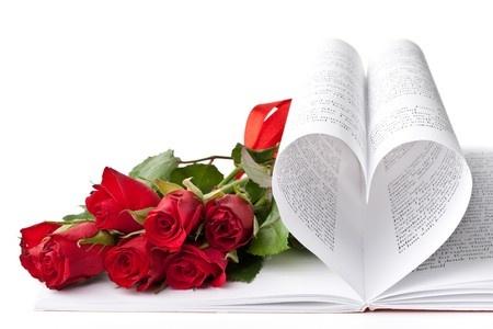 bookish valentine