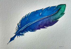Image of a feather by Janet Anderton